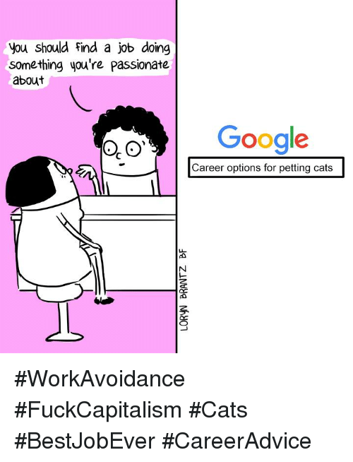 Memes, Passionate, and 🤖: you should find a job doing  something you're passionate  about  Google  Career options for petting cats #WorkAvoidance #FuckCapitalism #Cats #BestJobEver #CareerAdvice