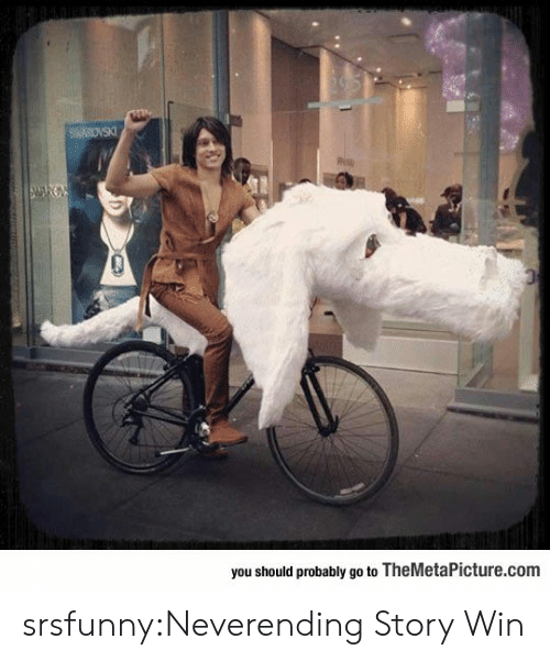 neverending: you should probably go to TheMetaPicture.com srsfunny:Neverending Story Win