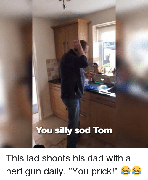 """Sodding: You silly sod Tom This lad shoots his dad with a nerf gun daily. """"You prick!"""" 😂😂"""