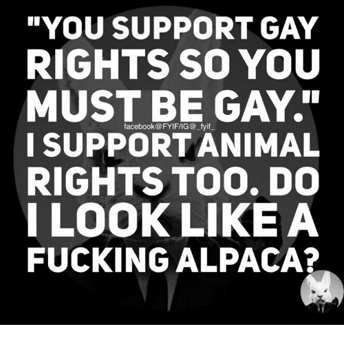 I Support Gay Rights 79