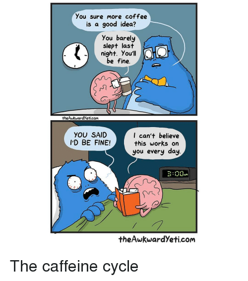 Memes, Cycling, and 🤖: you sure more coffee  is a good idea?  you barely  slept last  night. You'll  be fine.  theAwkwardyeticom  I can't believe  YOU SAID  I'D BE FINE!  this works on  you every day  the Awkwardyeti com The caffeine cycle