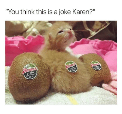 "gre: ""You think this is a joke Karen?""  en  Gre  4030"