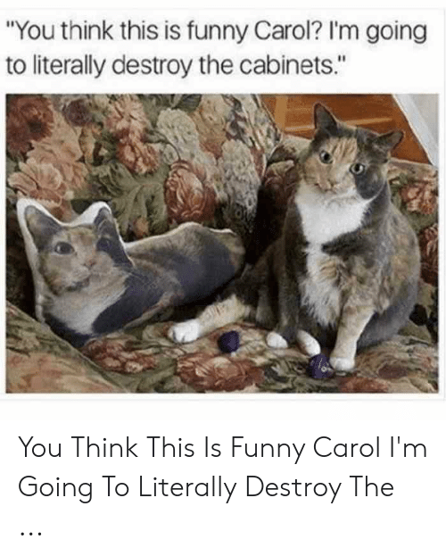 "Carol Meme: ""You think this is funny Carol? I'm going  to literally destroy the cabinets."" You Think This Is Funny Carol I'm Going To Literally Destroy The ..."