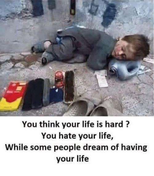 Funny Life Is Hard Memes of 2017 on SIZZLE