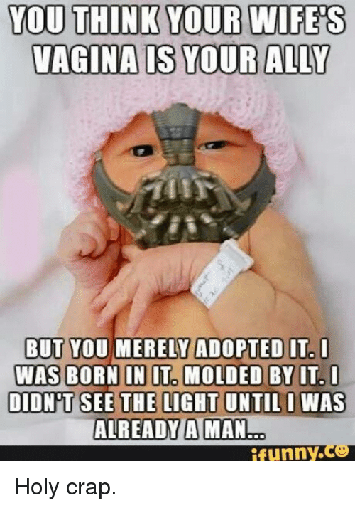Memes, Ally, and Vagina: YOU THINK YOUR WIFES  VAGINA S YOUR ALLY  BUT YOU MERELY ADOPTED IT- I  IN MOLDED BY IT I  DIDNT SEE THE LIGHT UNTIL I WAS  ALREADY A MAN  funny  co Holy crap.