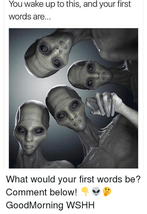 Memes, Wshh, and 🤖: You wake up to this, and your first  words are. What would your first words be? Comment below! 👇👽🤔 GoodMorning WSHH