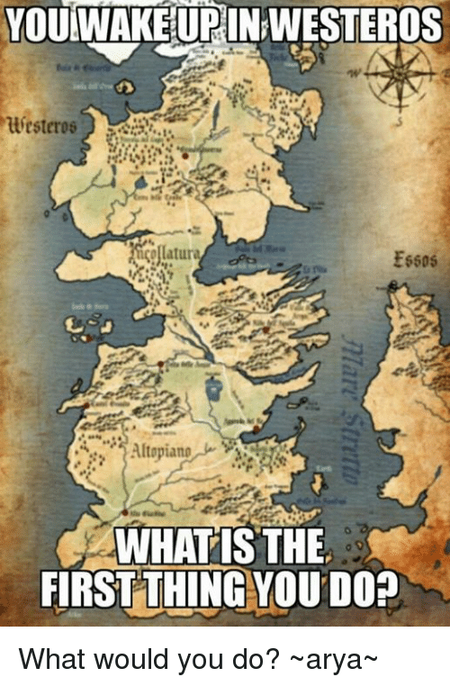 What Is The First: YOU WAKE URINRWESTEROS  huyesteres  Essos  Altopiang  WHAT IS THE  FIRST THING YOU DO? What would you do?  ~arya~