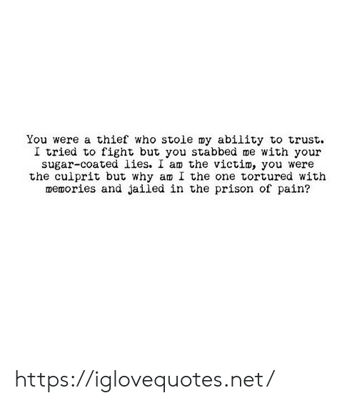 Who Stole: You were a thief who stole my ability to trust.  I tried to fight but you stabbed me with your  sugar-coated lies. I am the victim, you were  the culprit but why am I the one tortured with  memories and jailed in the prison of pain? https://iglovequotes.net/