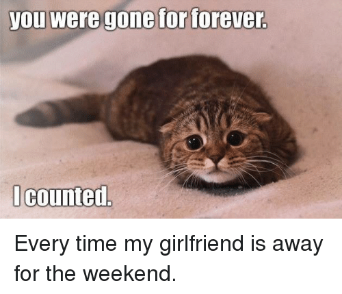 Memes, Forever, and The Weekend: you Were gone for forever  I counted Every time my girlfriend is away for the weekend.