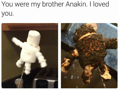 you were my brother anakin: You were my brother Anakin. I loved  you.