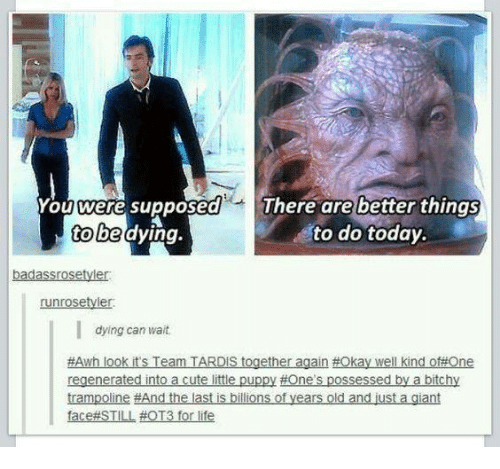Life, Memes, and Giant: You were supposed  There are better things  to be  dying  to do today.  badassrosetyder  runrosetyler.  dying can wait.  #Awh look its Team IS together  again #Okay well kind of#One  regenerated into a cutelitle puppy #Ones possessed by a bitchy  trampoline #And the last is billions of years old and just a giant  ace STILL #OT3 for life