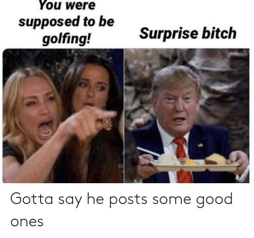 Golfing: You were  supposed to be  golfing!  Surprise bitch Gotta say he posts some good ones