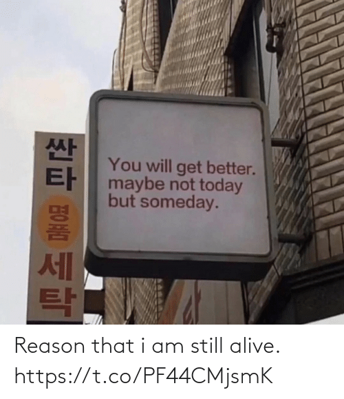 get better: You will get better.  maybe not today  but someday.  세 Reason that i am still alive. https://t.co/PF44CMjsmK