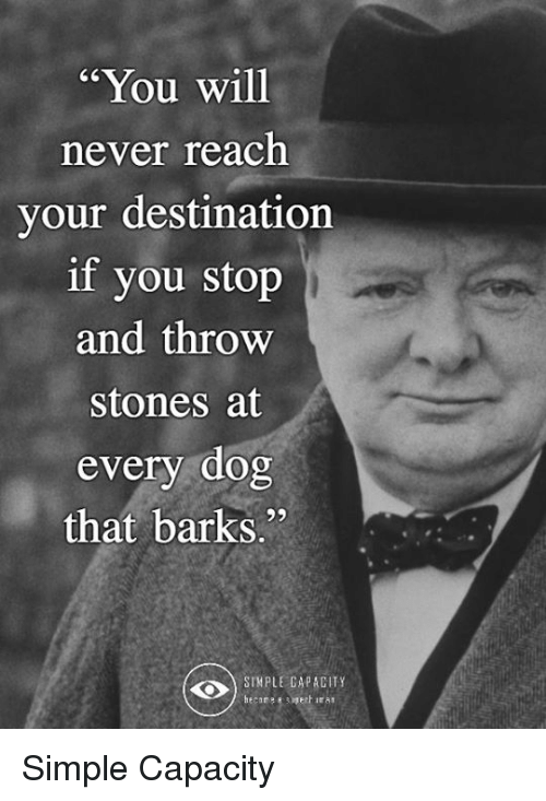 """Memes, Never, and 🤖: """"You will  never reach  your destination  if you stop  and throw  stones at  every dog  that barkS.""""  SIMPLE CAPACITY Simple Capacity"""