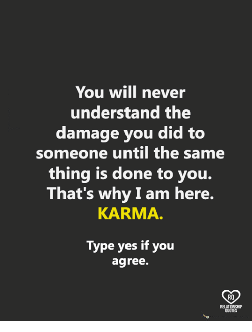 Memes, Karma, and Never: You will never  understand the  damage you did to  someone until the same  thing is done to you.  That's why I am here.  KARMA.  Type yes if you  agree.  RO  QUOTE