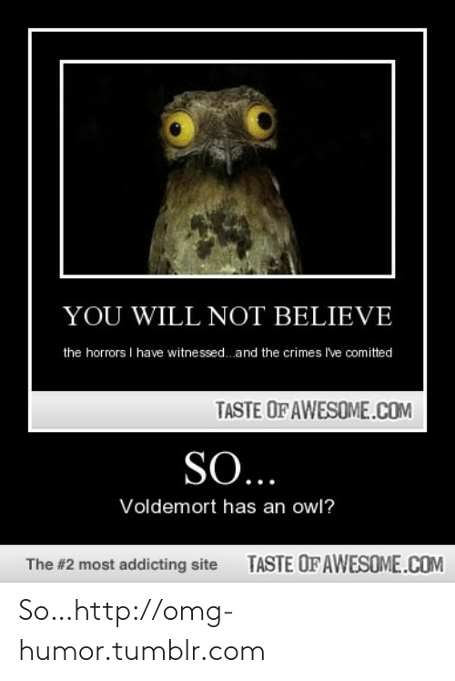 Horrors: YOU WILL NOT BELIEVE  the horrors I have witnessed.and the crimes I've comitted  TASTE OF AWESOME.COM  SO...  Voldemort has an owl?  TASTE OFAWESOME.COM  The #2 most addicting site So…http://omg-humor.tumblr.com