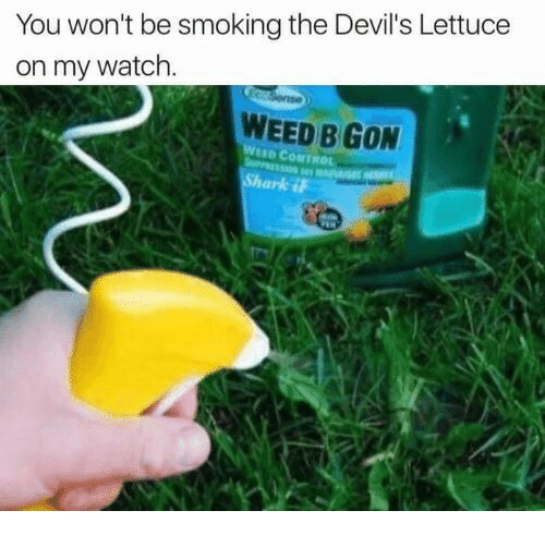 The Devils Lettuce: You won't be smoking the Devil's Lettuce  on my watch  WEED B GON  WND CONTROL
