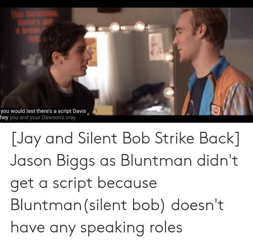 jay and silent bob: you would last there's a script Davis  hey you and your Dawson's cray [Jay and Silent Bob Strike Back] Jason Biggs as Bluntman didn't get a script because Bluntman(silent bob) doesn't have any speaking roles