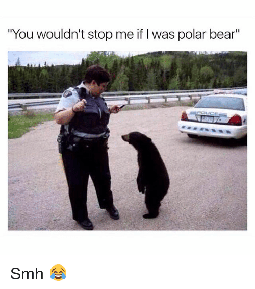 "Memes, Smh, and Bear: ""You wouldn't stop me if I was polar bear"" Smh 😂"