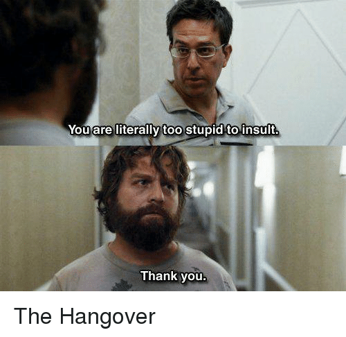 Memes, The Hangover, and Thank You: Youare literally too Stupid to insult  Thank you The Hangover