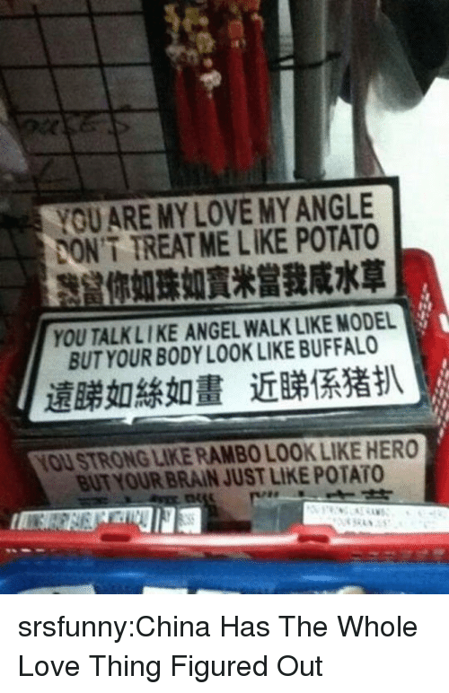 Love, Rambo, and Tumblr: YOUARE MY LOVE MY ANGLE  ONT TREAT ME LIKE POTATO  你如珠如,,當我咸水草  YOU TALKLIKE ANGEL WALK LIKE MODEL  BUT YOUR BODY LOOK LIKE BUFFALO  遠睇如絲如畫近睇係猪扒  YOU STRONG LIKE RAMBO LOOK LIKE HERO  BUT YOUR BRAIN JUST LIKE POTATO srsfunny:China Has The Whole Love Thing Figured Out