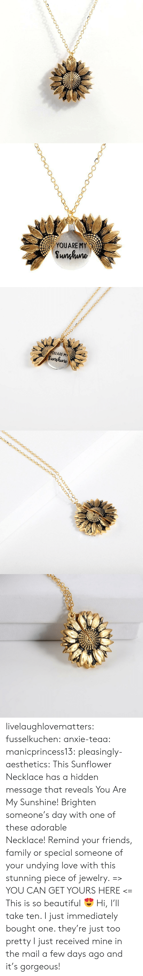 too pretty: YOUARE MY  Sunhuno   YOUARE MY  Sunghune livelaughlovematters: fusselkuchen:  anxie-teaa:   manicprincess13:   pleasingly-aesthetics:  This Sunflower Necklace has a hidden message that reveals You Are My Sunshine! Brighten someone's day with one of these adorable Necklace!Remind your friends, family or special someone of your undying love with this stunning piece of jewelry. => YOU CAN GET YOURS HERE <=   This is so beautiful 😍    Hi, I'll take ten.    I just immediately bought one. they're just too pretty   I just received mine in the mail a few days ago and it's gorgeous!
