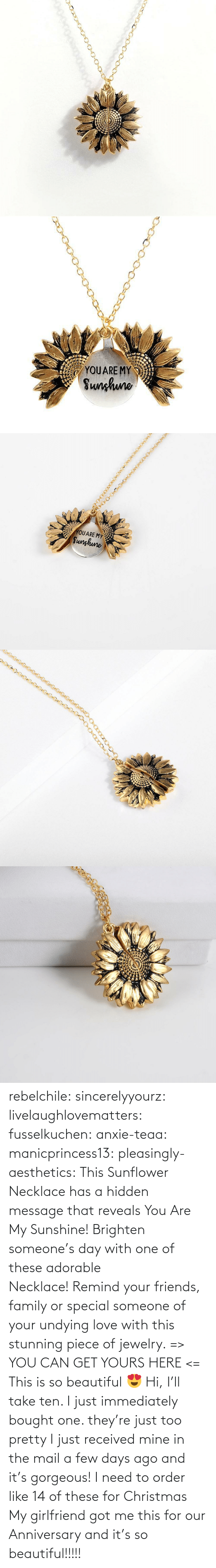 Beautiful, Christmas, and Family: YOUARE MY  Sunhuno   YOUARE MY  Sunghune rebelchile:  sincerelyyourz:  livelaughlovematters:  fusselkuchen:  anxie-teaa:   manicprincess13:   pleasingly-aesthetics:  This Sunflower Necklace has a hidden message that reveals You Are My Sunshine! Brighten someone's day with one of these adorable Necklace! Remind your friends, family or special someone of your undying love with this stunning piece of jewelry. => YOU CAN GET YOURS HERE <=   This is so beautiful 😍    Hi, I'll take ten.    I just immediately bought one. they're just too pretty   I just received mine in the mail a few days ago and it's gorgeous!   I need to order like 14 of these for Christmas    My girlfriend got me this for our Anniversary and it's so beautiful!!!!!