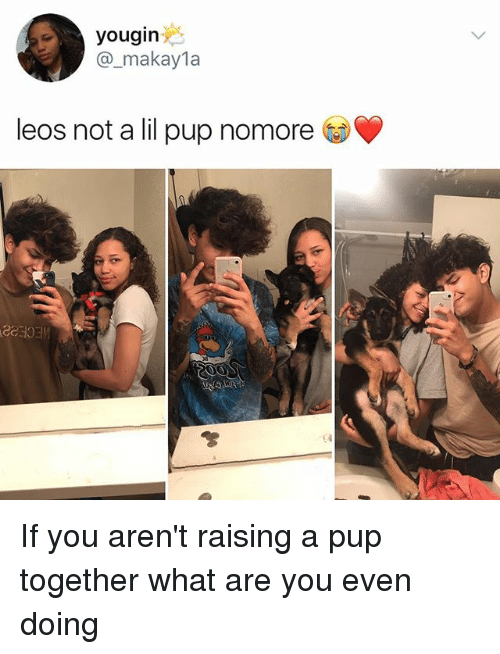 Makayla: yougin  @_makayla  leos not a lil pup nomore  CCOE If you aren't raising a pup together what are you even doing