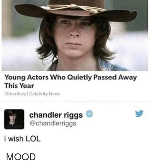 chandler: Young Actors Who Quietly Passed Away  This Year  OtherBuz  z | Celebrity News  chandler riggs  @chandlerriggs  i wish LOL MOOD