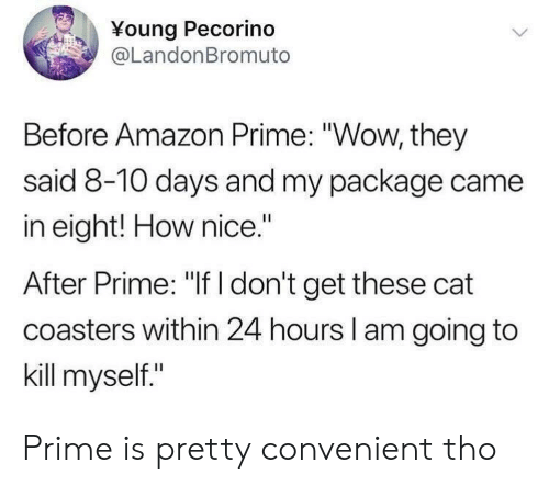 """kill myself: Young Pecorino  @LandonBromuto  Before Amazon Prime: """"Wow, they  said 8-10 days and my package came  in eight! How nice.""""  After Prime: """"If I don't get these cat  coasters within 24 hours l am going to  kill myself."""" Prime is pretty convenient tho"""