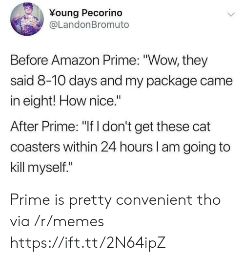 """kill myself: Young Pecorino  @LandonBromuto  Before Amazon Prime: """"Wow, they  said 8-10 days and my package came  in eight! How nice.""""  After Prime: """"If I don't get these cat  coasters within 24 hours l am going to  kill myself."""" Prime is pretty convenient tho via /r/memes https://ift.tt/2N64ipZ"""