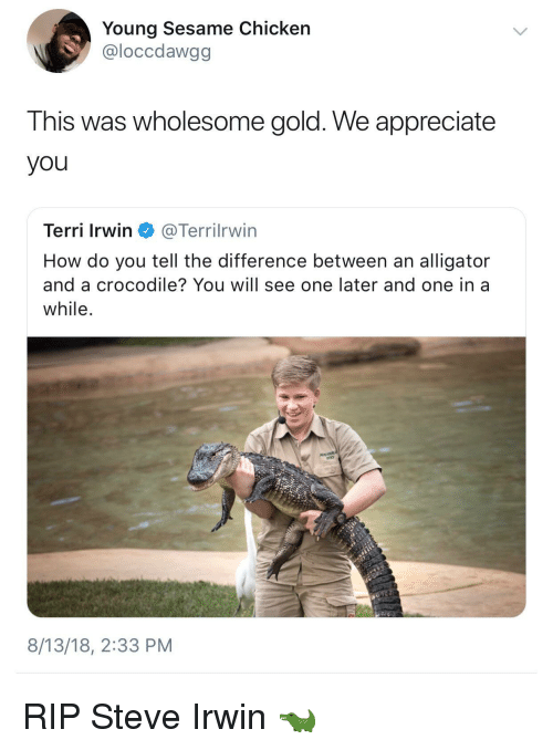 Terri: Young Sesame Chicken  @loccdawgg  This was wholesome gold. We appreciate  you  Terri Irwin @Terrilrwin  How do you tell the difference between an alligator  and a crocodile? You will see one later and one in a  while  8/13/18, 2:33 PM RIP Steve Irwin 🐊