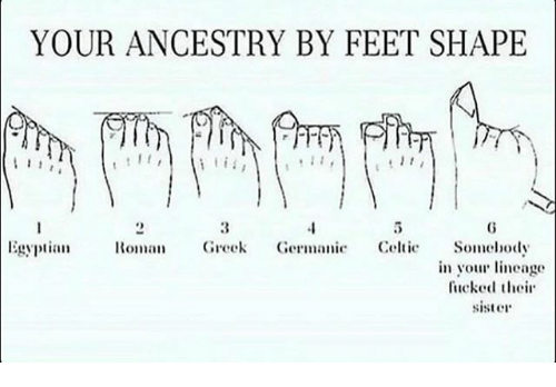 Memes, Ancestry, and Greek: YOUR ANCESTRY BY FEET SHAPE  Egypta Greek Germanie Celtie Somehody  in you neage  fucked thei  sister  111  VC)111,  11110,age