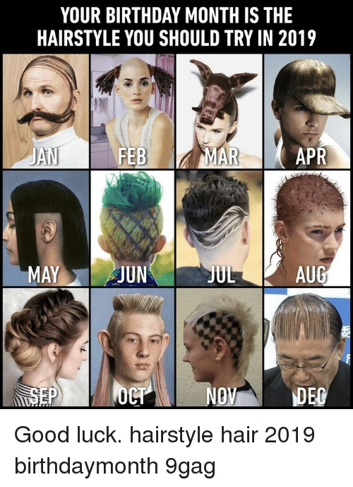 Birthday Month: YOUR BIRTHDAY MONTH IS THE  HAIRSTYLE YOU SHOULD TRY IN 2019  JAN  FEBMAR  APR  MAYJUN  JUL  AUG  NO Good luck.⠀ hairstyle hair 2019 birthdaymonth 9gag