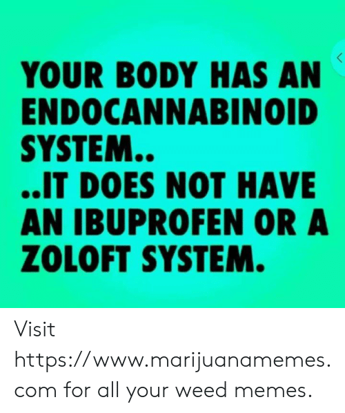 Weed Memes: YOUR BODY HAS AN  ENDOCANNABINOID  SYSTEM..  ..IT DOES NOT HAVE  AN IBUPROFEN OR A  ZOLOFT SYSTEM Visit https://www.marijuanamemes.com  for all your weed memes.