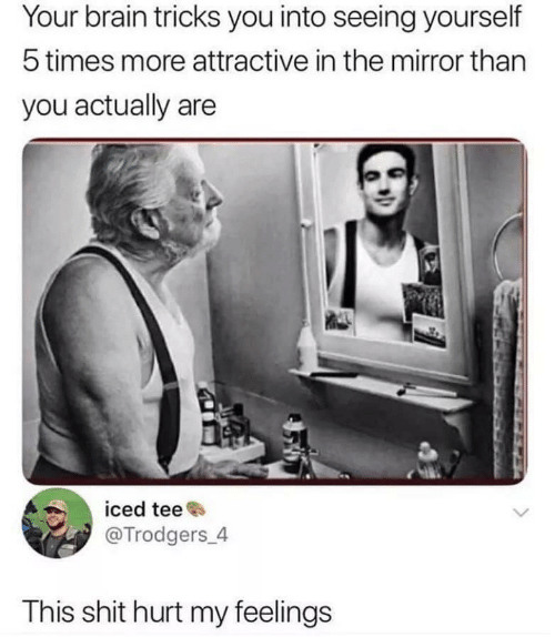 tee: Your brain tricks you into seeing yourself  5 times more attractive in the mirror than  you actually are  iced tee  @Trodgers 4  This shit hurt my feelings