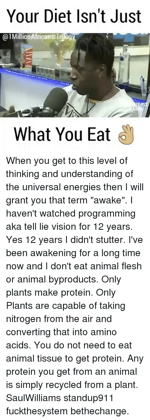"""amino acids: Your Diet Isn't Just  01Million Africans Triog  What You Eat When you get to this level of thinking and understanding of the universal energies then I will grant you that term """"awake"""". I haven't watched programming aka tell lie vision for 12 years. Yes 12 years I didn't stutter. I've been awakening for a long time now and I don't eat animal flesh or animal byproducts. Only plants make protein. Only Plants are capable of taking nitrogen from the air and converting that into amino acids. You do not need to eat animal tissue to get protein. Any protein you get from an animal is simply recycled from a plant. SaulWilliams standup911 fuckthesystem bethechange."""
