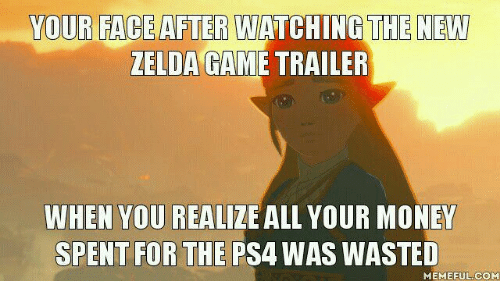 Wasted Meme: YOUR FACE AFTER WATCHING THE NEW  ZELDA GAMETRAILER  WHEN YOU REALIZE ALL YOUR MONEY  SPENT FOR THE  PSA WAS WASTED  MEME FUL COM