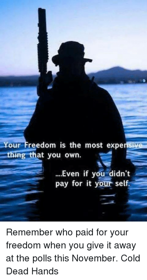 Cold: Your Freedom is the most experts  ing that you own  Even if you didn't  pay for it your self Remember who paid for your freedom when you give it away at the polls this November. Cold Dead Hands