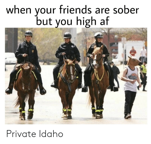 Sober: your friends are sober  but you high af  when  oshioif  OUNTED Private Idaho