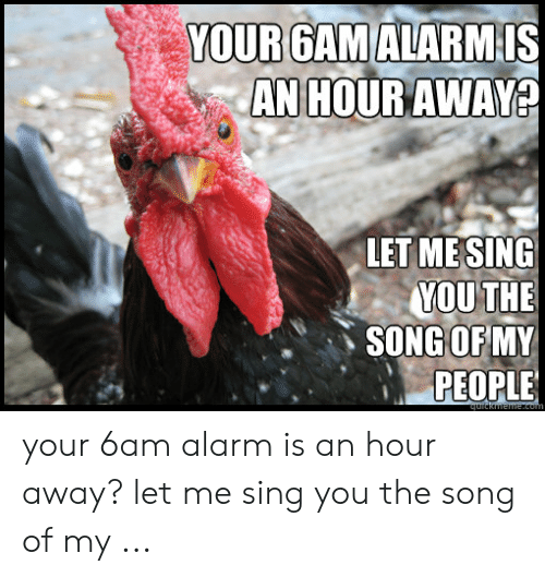 Rooster Meme: YOUR GAMALARM  Is  AN  HOUR AWAY  LET MESING  MOUTHE  SONGOFMY  PEOPLE your 6am alarm is an hour away? let me sing you the song of my ...