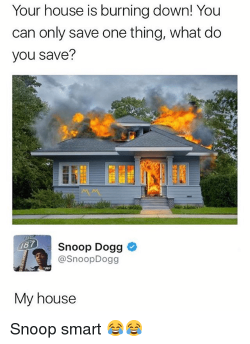 Dogges: Your house is burning down! You  can only save one thing, what do  you save?  187  Snoop Dogg  @SnoopDogg  My house Snoop smart 😂😂