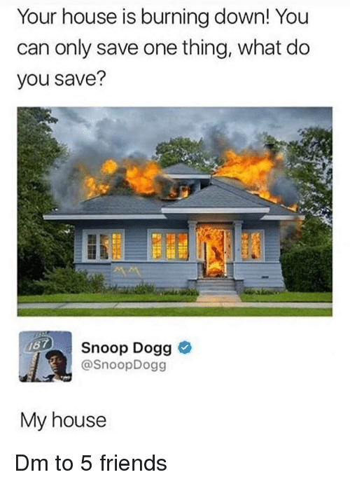 Friends, Memes, and My House: Your house is burning down! You  can only save one thing, what do  you save?  Snoop Dogg  @SnoopDogg  My house Dm to 5 friends