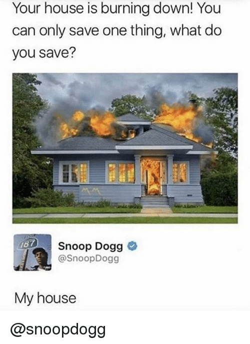 Memes, My House, and Snoop: Your house is burning down! You  can only save one thing, what do  you save?  Snoop Dogg o  @SnoopDogg  167  My house @snoopdogg