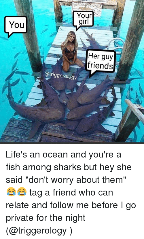 """Friends, Memes, and Fish: Your  irl  You  Her guy  friends  @triggerology Life's an ocean and you're a fish among sharks but hey she said """"don't worry about them"""" 😂😂 tag a friend who can relate and follow me before I go private for the night (@triggerology )"""
