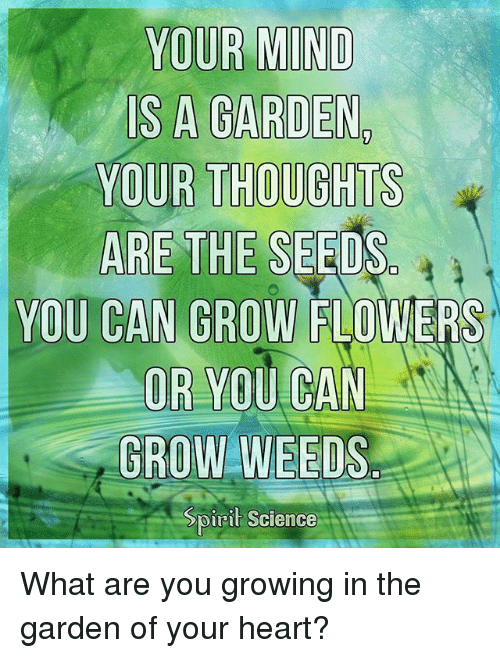 Memes, Flowers, and Heart: YOUR  IS A GARDEN  YOUR THOUGHTS  ARE THE SEEDS  YOU CAN GROW FLOWERS  OR YOU CAN  GROW WEEDS  pirit Science What are you growing in the garden of your heart?