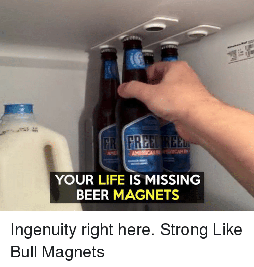Strong Liking: YOUR LIFE IS MISSING  BEER MAGNETS Ingenuity right here.  Strong Like Bull Magnets