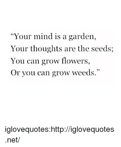 """weeds: """"Your mind is a garden,  Your thoughts are the seeds;  You can grow flowers,  Or you can grow weeds."""" iglovequotes:http://iglovequotes.net/"""