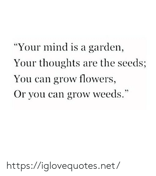 """weeds: """"Your mind is a garden,  Your thoughts are the seeds;  You can grow flowers,  Or you can grow weeds."""" https://iglovequotes.net/"""