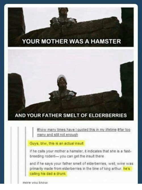 King Arthur: YOUR MOTHER WAS A HAMSTER  AND YOUR FATHER SMELT OF ELDERBERRIES  #how many times have I guoted this in my lifetime #far too  Guys, btw, this is an actual insult  if he calls your mother a hamster, t indicates that she is a fast-  breeding rodent you can get the insult there  and if he says your father smett of elderberries, we wine was  primarity made from elderberries in the time of king arthur, he's  caling his dad a drunk  more vou know